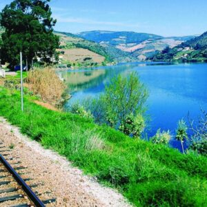 Guided Train Tours